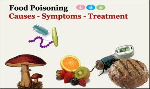 food-poisoning-graphic1